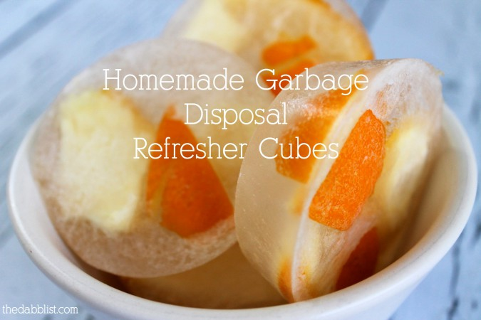 garbage disposal refresher cubes